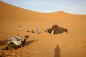 5 Days Marrakech Desert Tour from Fes