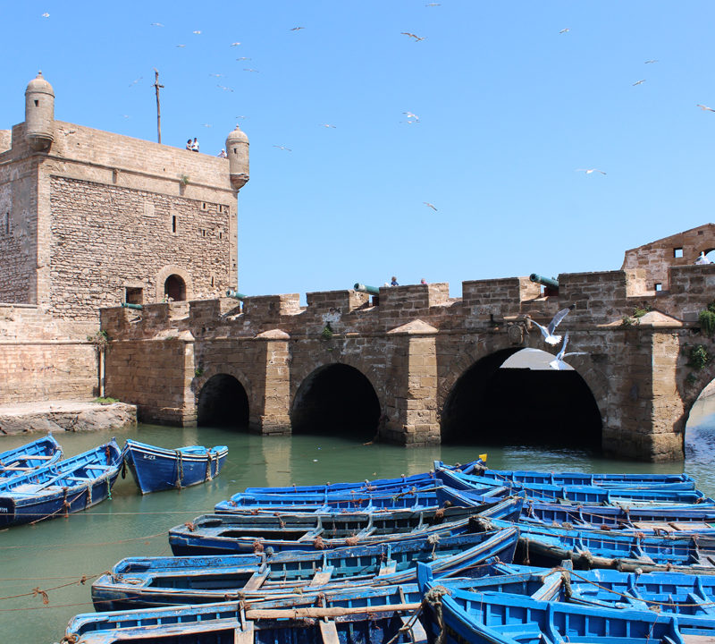 Marrakech Essaouira Day Trip